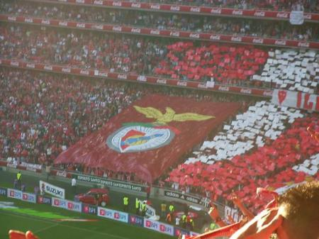 benfica-slb